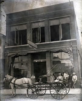 Sylvester Store with delivery horses