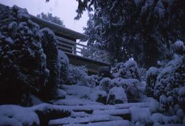 Snowy trees and steps and a porch of a house