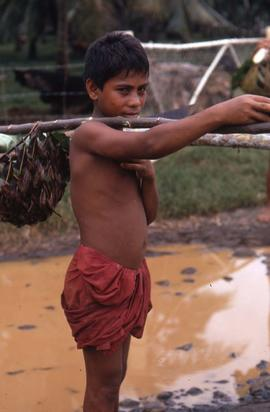 Boy holding a balancing stick on his shoulder to carry a thatched basket