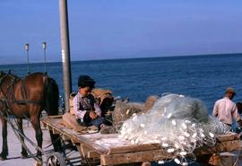 Child with fishing net
