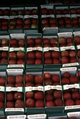 Many cardboard boxes of red apples
