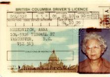 Driver's Licence, October, 9, 1984