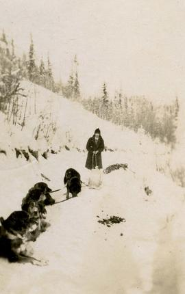 [Dr. Irving Snider with a dog sled and dogs]