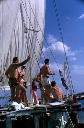Men standing on a sailboat with their backs to the camera