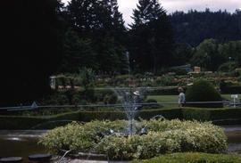 Garden with a fountain surrounded by greenery in the foreground