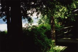 [Small portion of the back deck of the Snider's house looking out to the trees and water in the d...