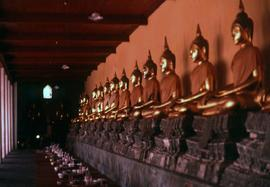Row of golden buddha statues at Wat Pho