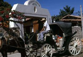 Man driving a horse and carriage with a hotel in the background