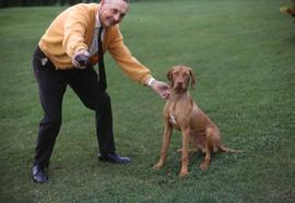 Unknown man holding onto a dog by its collar