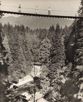 Capilano Suspension Bridge, North Vancouver, B.C.