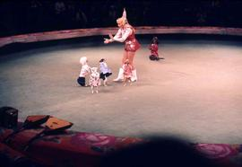 Woman and five dancing dogs in a circus ring