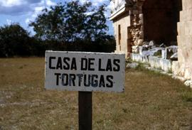 "Sign on a wooden stake that reads: ""Casa de la Tortugas"""