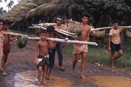 Group of people carrying balancing sticks with thatched baskets at the end