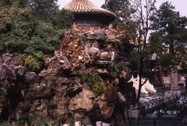 Grounds of a temple with rocks and trees in the foreground and the top of a temple in the background