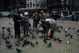 Group of people feeding pigeons in a square